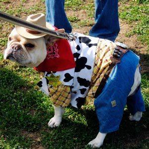 Cowboy-Dog-Costume