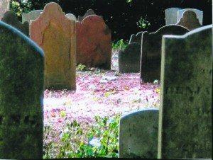 Monfort Cemetery (Photo by Daniel Case)