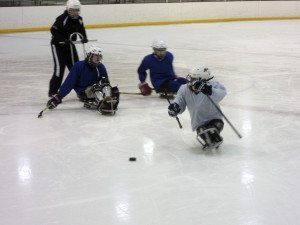 SledHockey__C