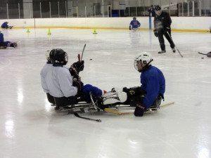 SledHockey__D
